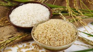 شایعهٔ مصادر و جریمهٔ ٤ تن برنج متعلق به حوزه علمیه گُشت