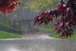 عبادت با دعای باران